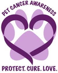 Cancer in our pets
